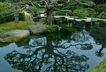 Japão jardim