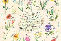 Flowers power / Flower