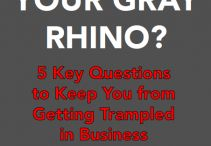 THE GRAY RHINO / Information and reading guide for the new book, THE GRAY RHINO: How to Recognize and Act on the Obvious Dangers We Ignore.