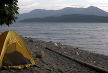 Camping Tips / Become a camping pro with these camping tips, camping advice, and info on how to camp!