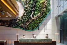 Greenery walls