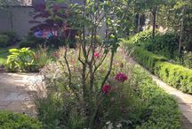 Chiswick Mall garden / A large garden where the planting design has been reimagined to create a more flower-filled scheme and accentuate the seasonality. Design by Ruth Willmott.