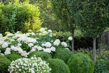 white garden Julie / bílá, polostín