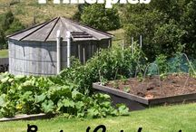 Permaculture / Everything permaculture- working with your environment and growing with sustainability in mind.