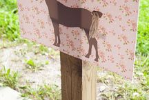 Cowgirl themed party / by Tammy Jenkins