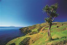 The Coromandel Peninsula