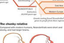Neandervölgyiek és első modern emberek