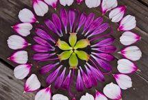 Mandalas con pétalos de flores
