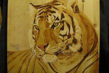 Félins divers : tigres, ocelots,...pyrogravures perso / Pyrogravure sur bois et pigments.