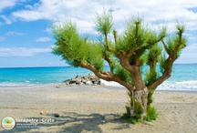 Nature of Ierapetra