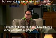 big bang theory sjov