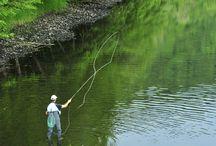 La Pêche dans les Combrailles