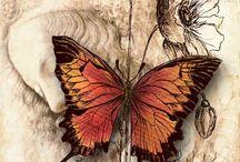 Favoritbild fjäril