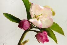 Яблоня из фоамирана