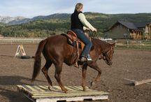 Horsey, Horsey........Riding