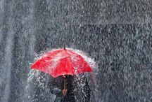 déšť a deštníky