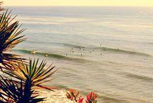 San Diego Life