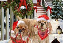Karácsonyi állatkák :)