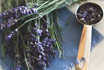 Lavender Love / My all time favourite flavour-Lavender!