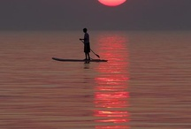 Paddle boarding! / Paddle boarding locations and boards / by Danielle Wilson Broussard