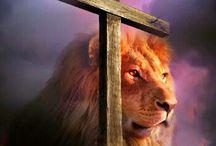 Löwe Judas