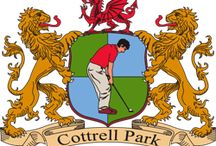 Golf in Wales / If golf is your passion there are many Welsh golf courses situated around Wales from day courses to club membership establishments. Many have accommodation from Hotels to Country houses so why not consider booking a golfing holiday in Wales while enjoying your hobby and relaxing at the same time.