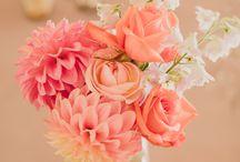 Coral / Colour scheme inspiration for weddings