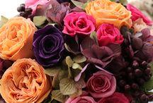 Preserved flower  Mix color