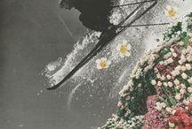 Collage / by Chucho Malagradecido