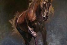 Лошади(картинки)