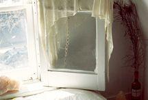 beds & windows