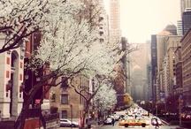 Spring / Springtime Inspiration