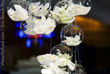 Orchidee Wedding