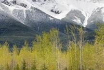 sesja w górach