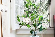 Framptons Vases