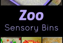 Zoo Theme investigation Stations