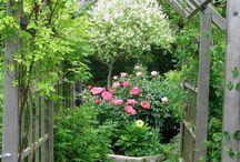 puutarhaunelmia