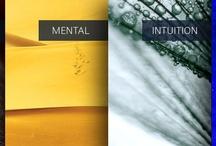 MentalBusiness / Informationen zu meiner Arbeit und Dienstleistungen, die Unternehmer und Unternehmen nachhaltig weiterbringen :-) www.menk.de - www.mentalbusiness.de - www.kreativitaetsdenken.de