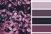 colors palette for bedroom