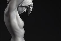 Anatomy References - Human
