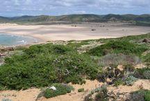 Portugal  Algarve 2009