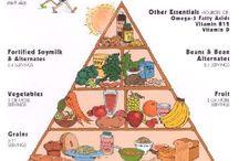 diabetes-diet-plan