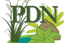PDN Blog Posts and Announcements / Here's where we post our monthly newsletters and Plant Delights Nursery announcements.  Tony and I will be blogging  more often going forward so this the Pinterest board to follow if you want the latest news on Pinterest  from us!    aja