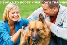 Dog Training / Resources and tips for dog obedience and trick training.