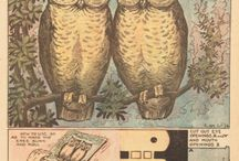Vintage Owl Illustrations / Who loves owls!?  This board is devoted to all things vintage owl.  These antique owl images in the public domain feature scientific illustrations of owls, greetings cards, holiday postcards, and more. Share them with your friends or turn them into fresh works of art!