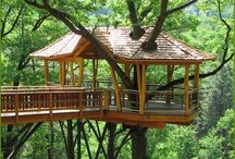 Treehouses / by Kristy Fox-hart
