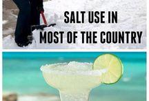 Why Do Snowbirds Love Florida?