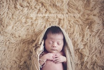 Newborn photography  / by Dolores Cantrell