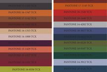 Colour Trends & Theory