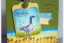 Cards - Stampin Up Wetlands